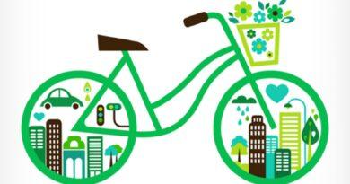 Bonus mobilità, click day: sito down, come fare domanda